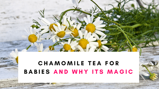 Chamomile Tea For Babies