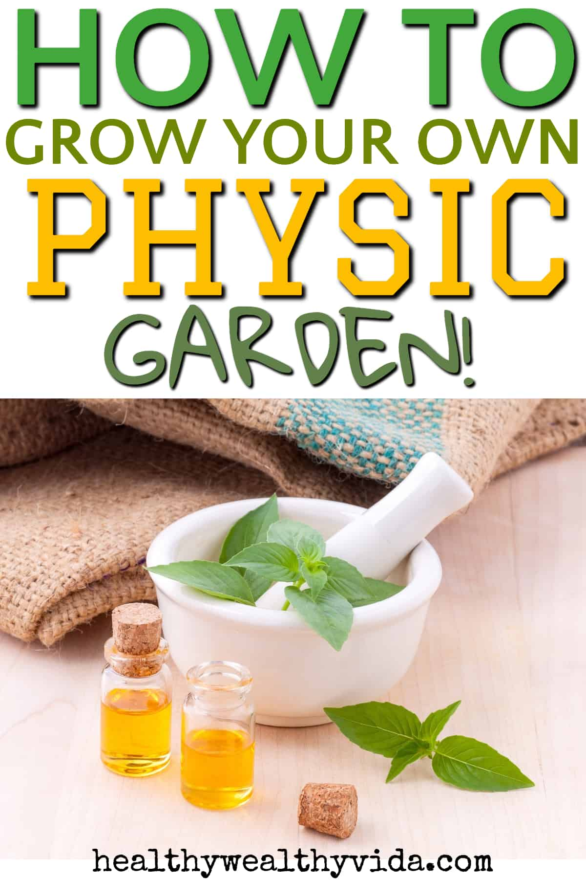 8 Easy Plants To Grow In Your Physic Medicinal Garden