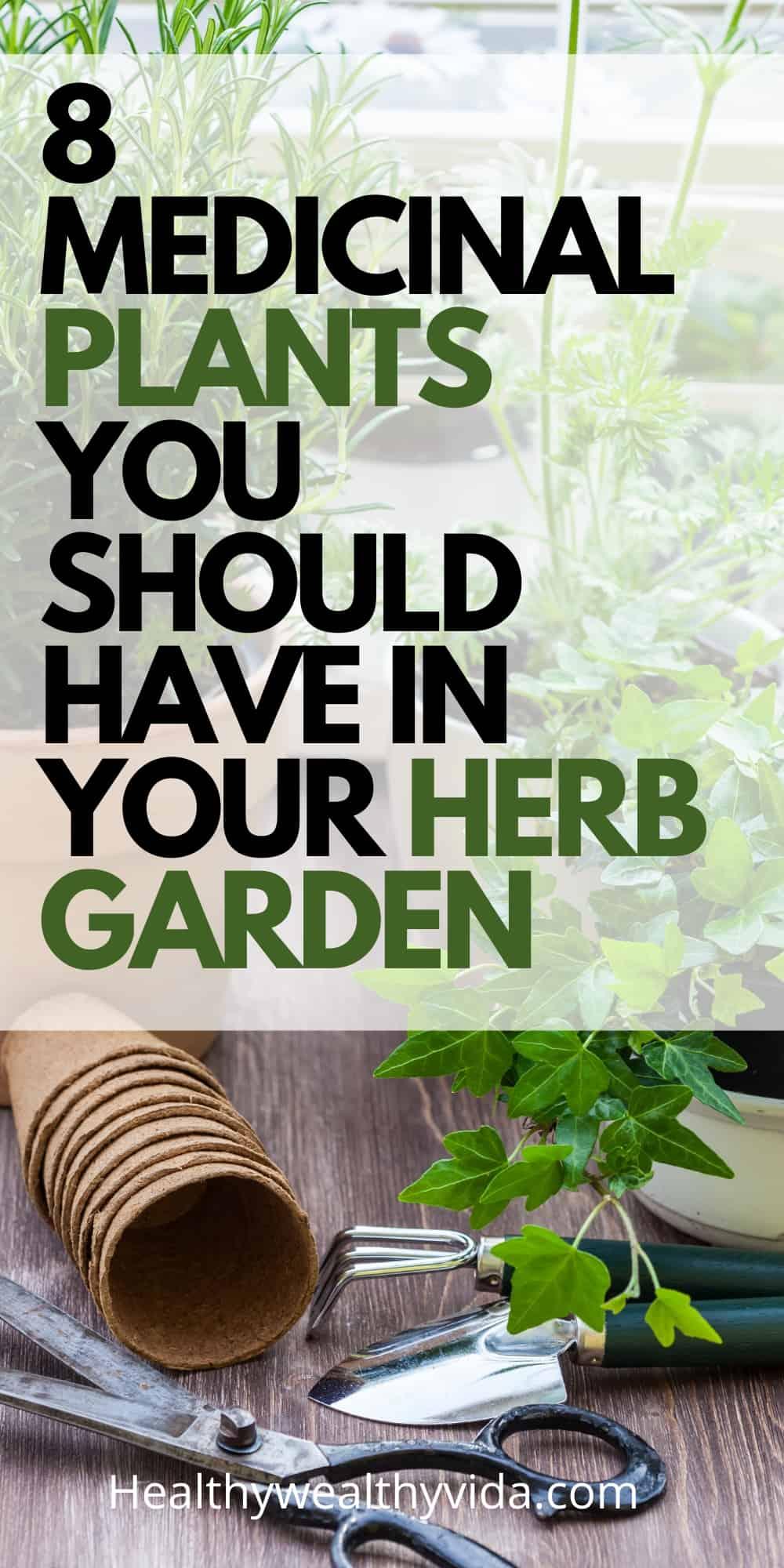 Medicinal Plants For Herb Garden