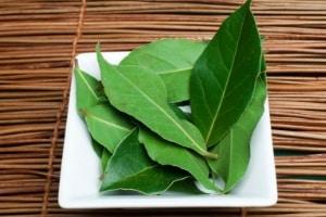 Bay Leaf Weevil Repellent