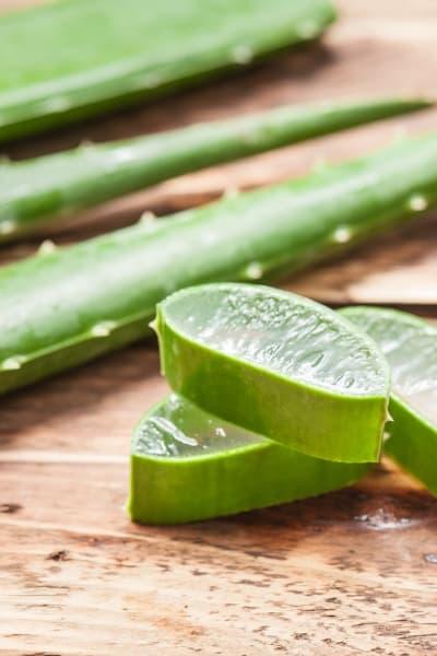 Cut Aloe Vera