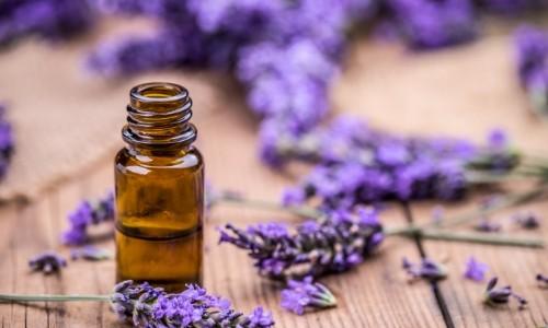 lavender oil sunburn